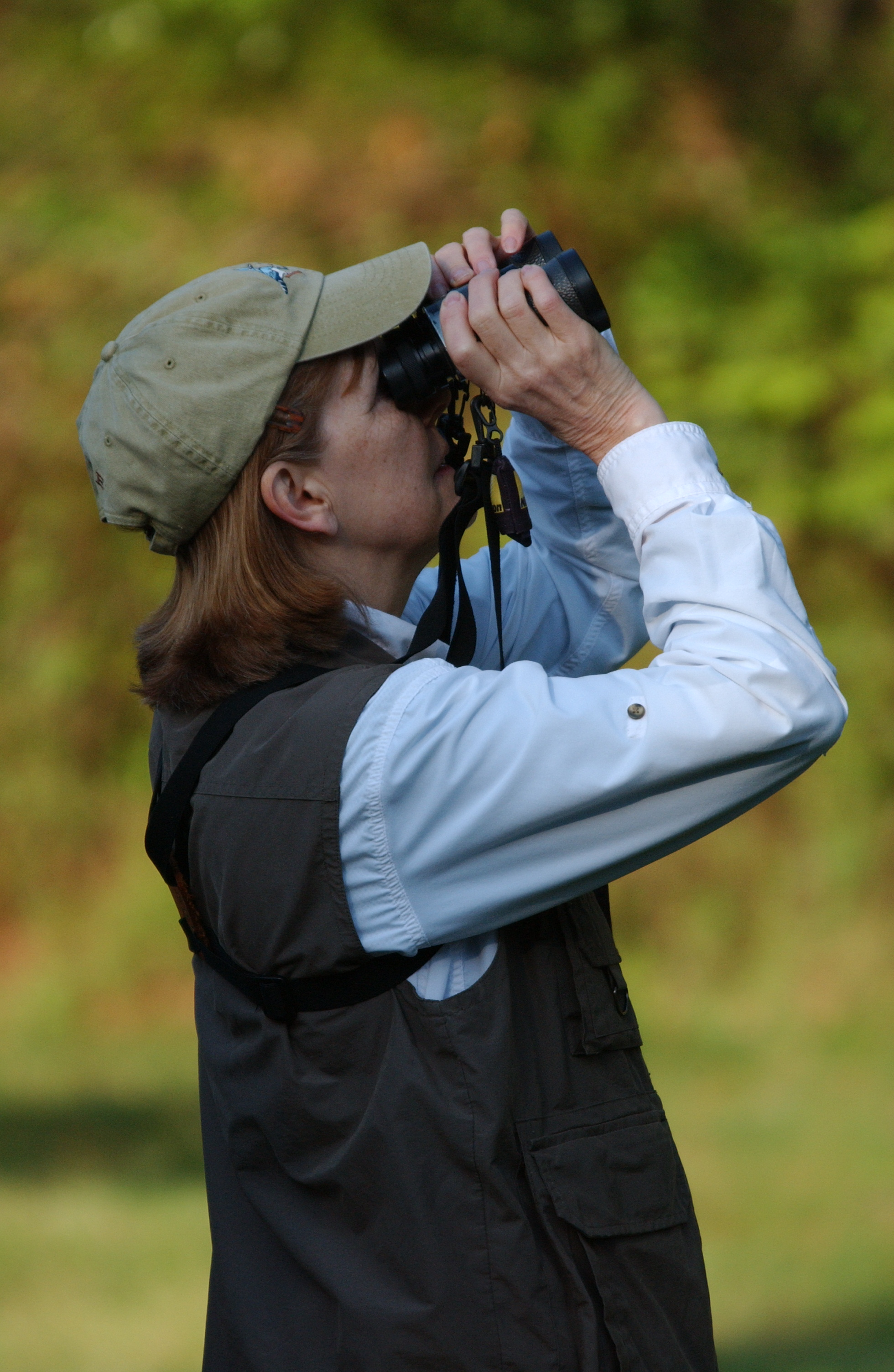 Birding - photo courtesy of Wicomico County Tourism