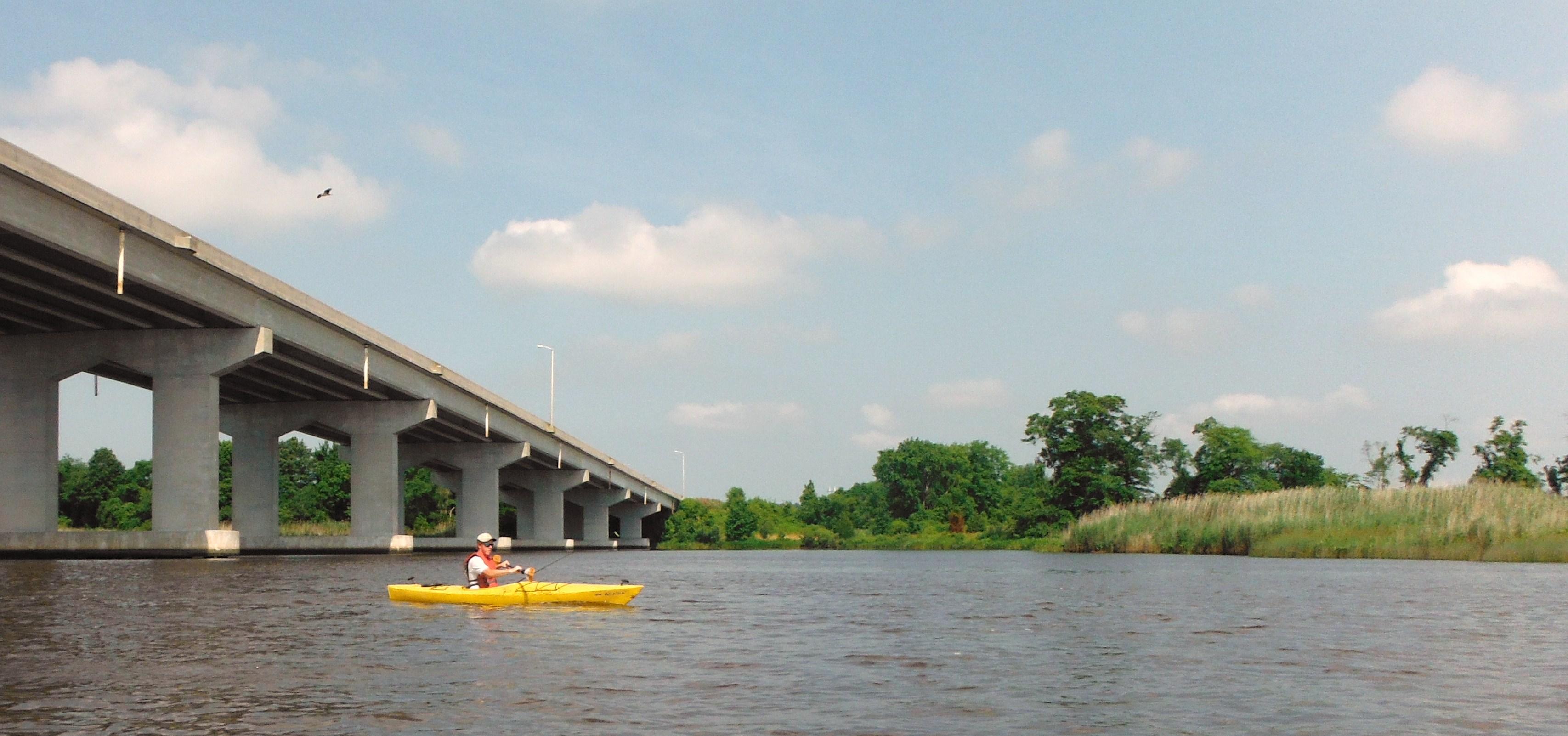 Kayaking under the Rt. 50 bridge outside of Vienna, MD.
