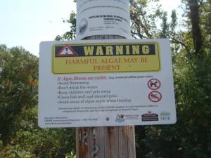 Harmful Algae Sign