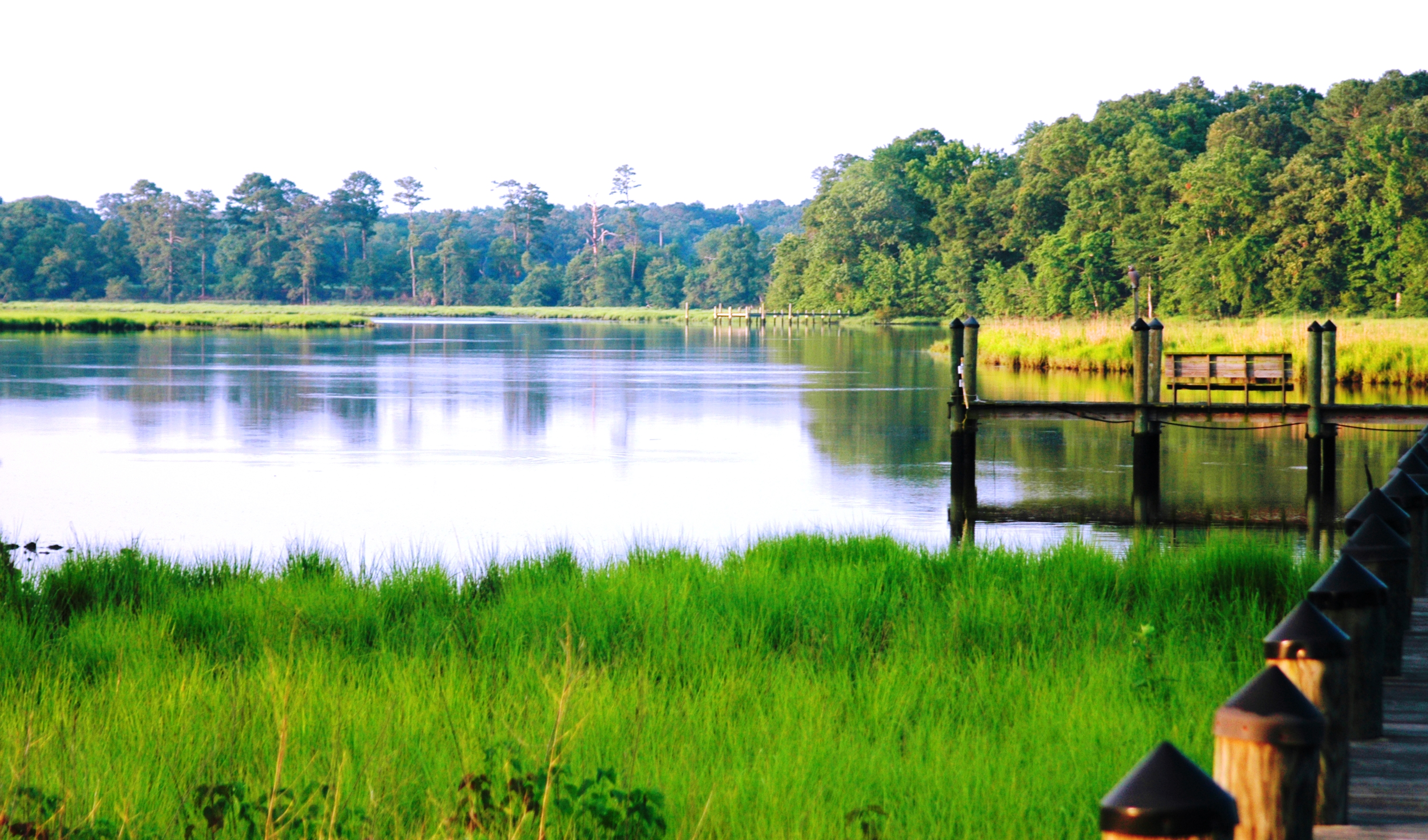Creek Morning - photo courtesy of Wicomico County Tourism