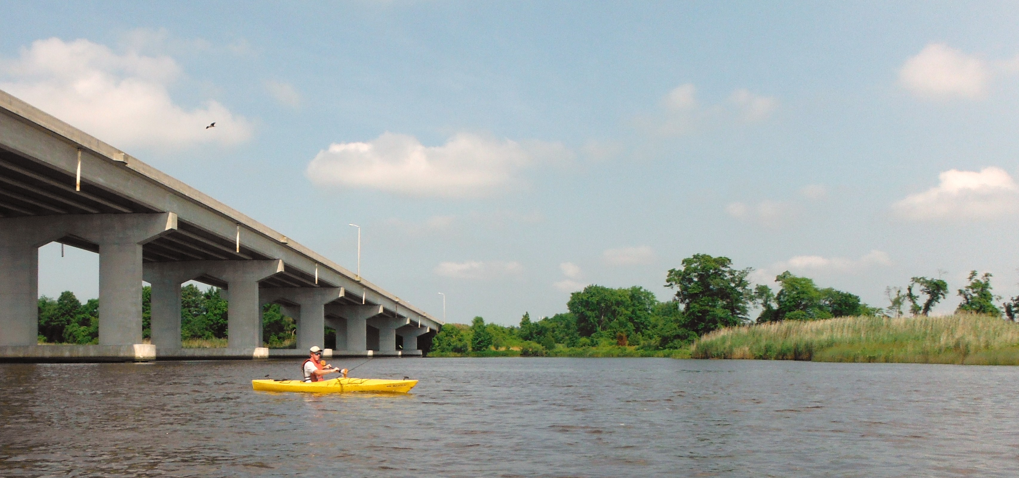 Kayaking under the Rt. 50 bridge outside of Vienna, MD.